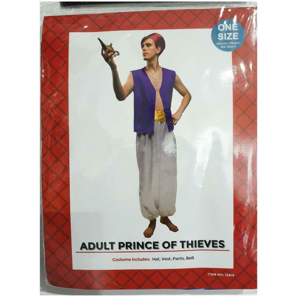 Adult Aladdin Costume