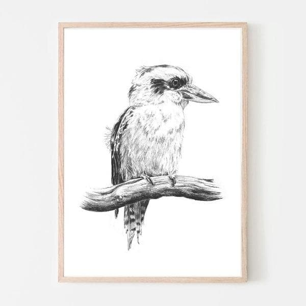 King Kookaburra Wall Art