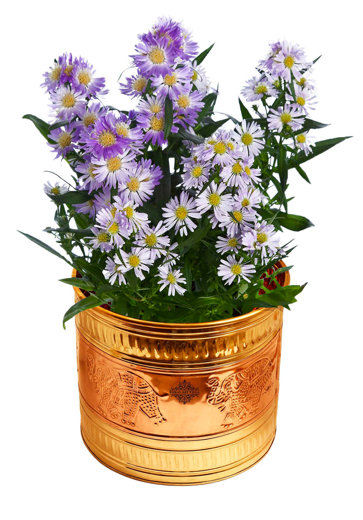 Brass Planter Embossed Design