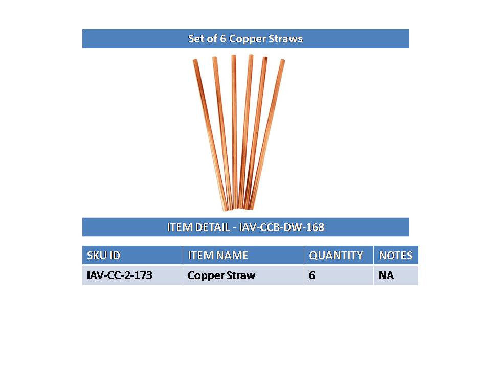 Copper Set of 6 Plain Design Straight Solid Straw