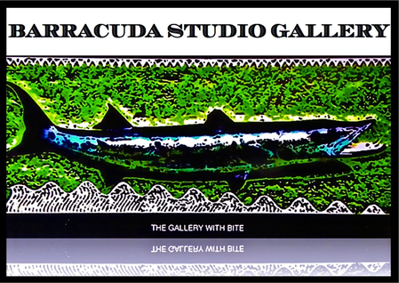 Barracuda Studio Gallery Design and Lifestyle Store