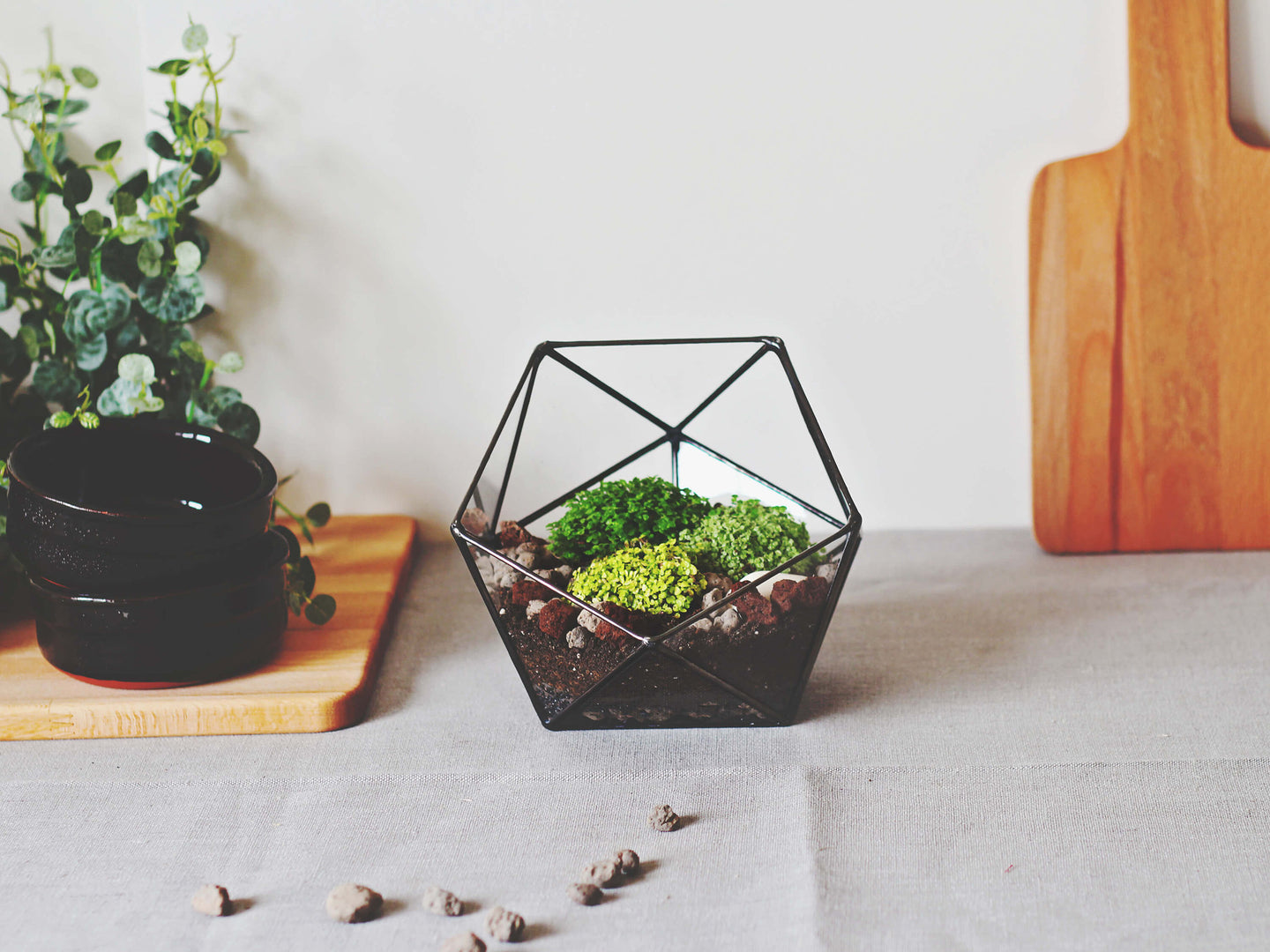 geometric indoor planter
