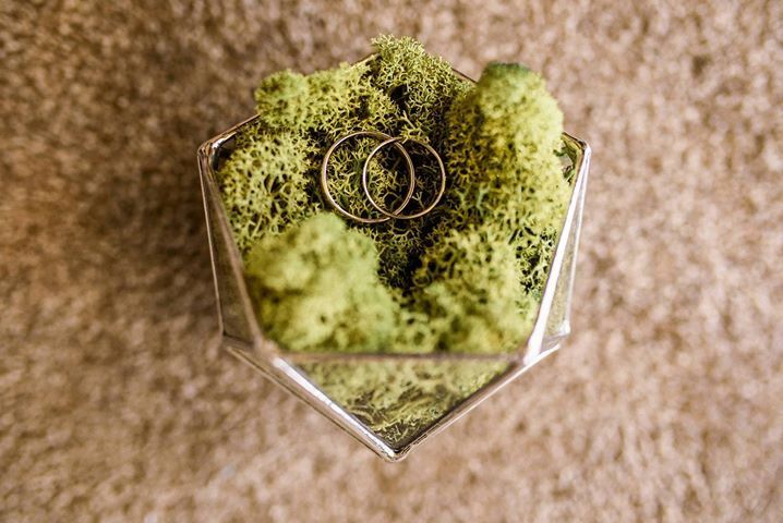 wedding ring box filled with moss
