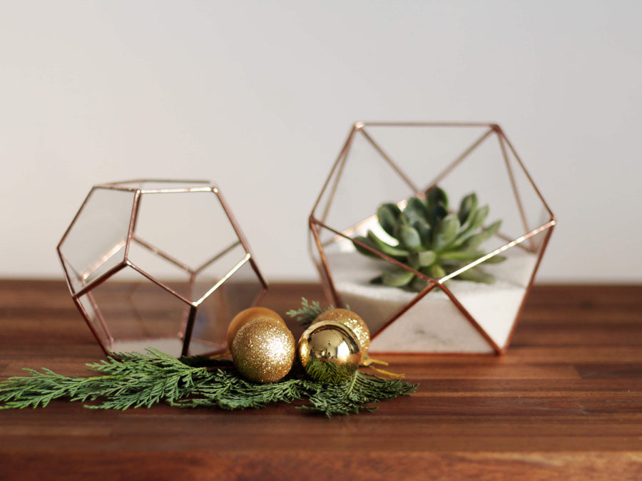 glass geometric terrariums