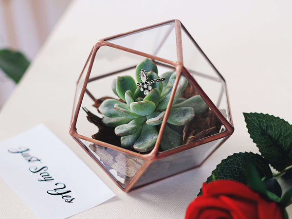 Geometric Glass Succulent Planter | Cubicle Decor