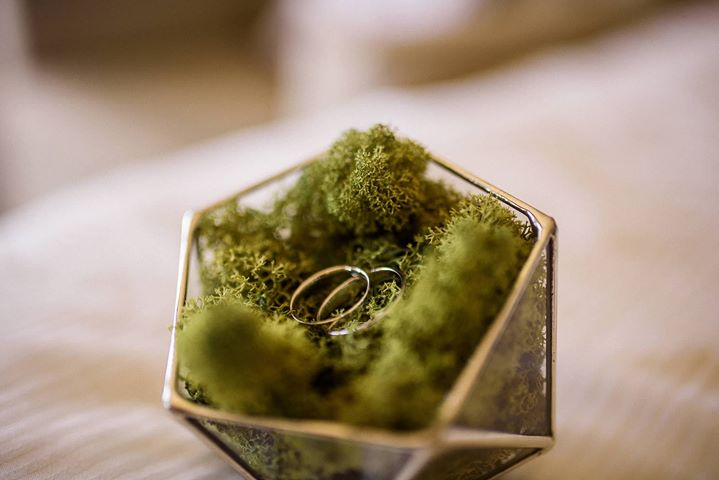 ring box with moss