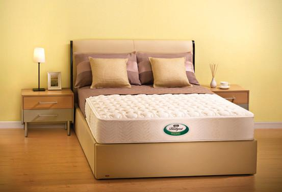 Beautyrest® – Roland Mattress