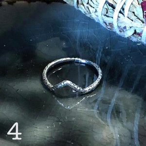 Norse rune symbol branch rings