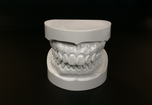 Big Teeth and Gnatho Models Bundle