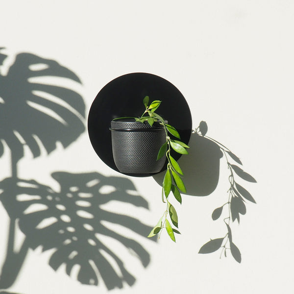 Sol Wall Planter