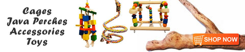 parrot toys, perches, java wood, cages, accessories