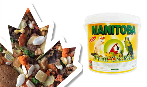 Manitoba Fruit Cocktail Parrots 700g / 4kg (Italy)