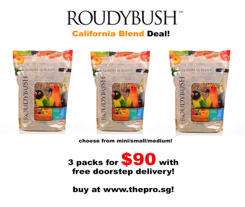 Roudybush California Blend Deal Bundle