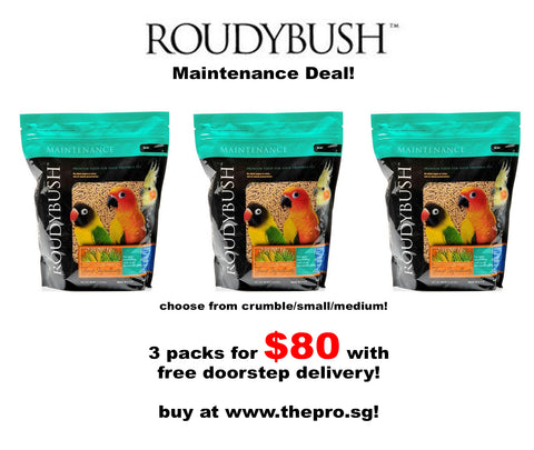 Roudybush Maintenance Deal Bundle