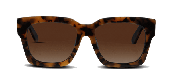 tony bianco charisma sunglasses tort