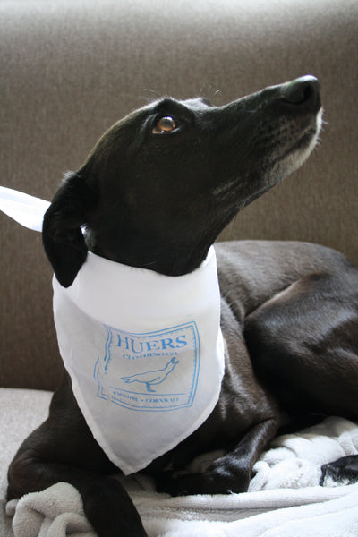 HUERS DOG BANDANA