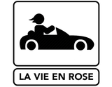 LA VIE EN ROSE ICON