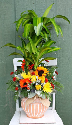 Sympathy Plants with Fresh Flowers