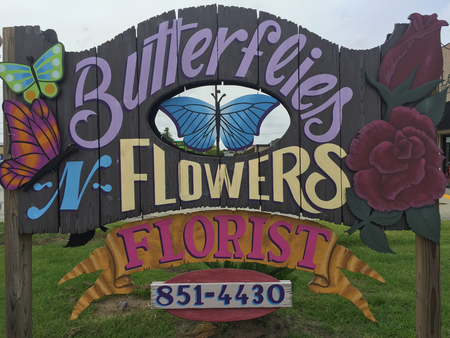 Butterflies-N-Flowers