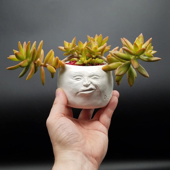 Face Pot - Grouchy by D. Edward Murray