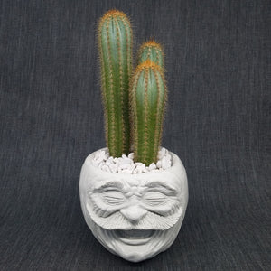 Face Pot - Vernon by D. Edward Murray