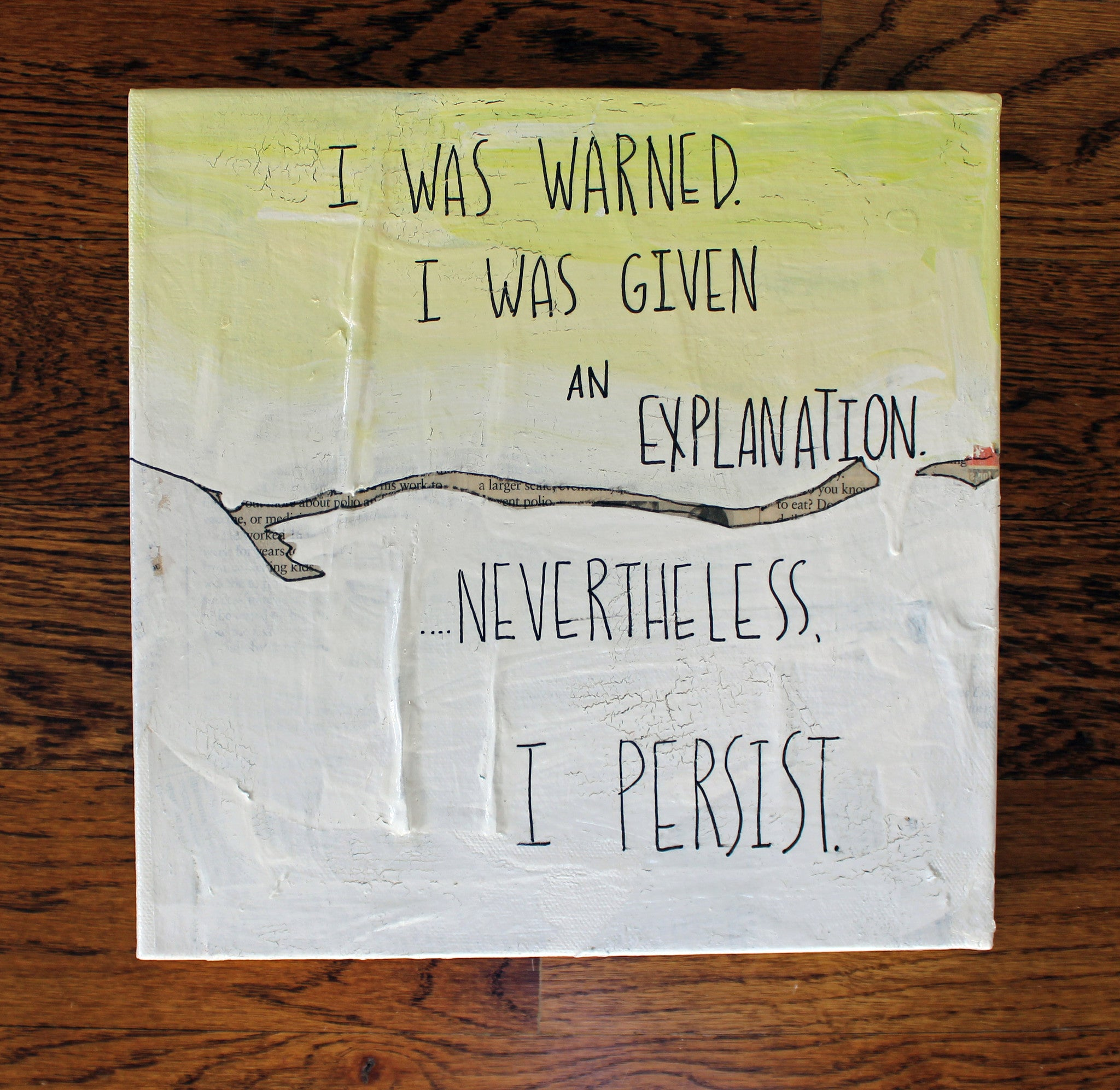 i've been warned but i persist canvas word art