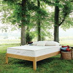 savvy rest natural latex mattress queen size store model