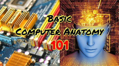 Basic Computer Anatomy 101
