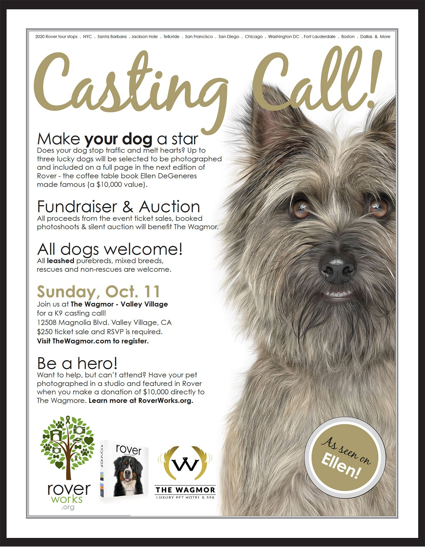 Rover + The Wagmor K9 Casting Call