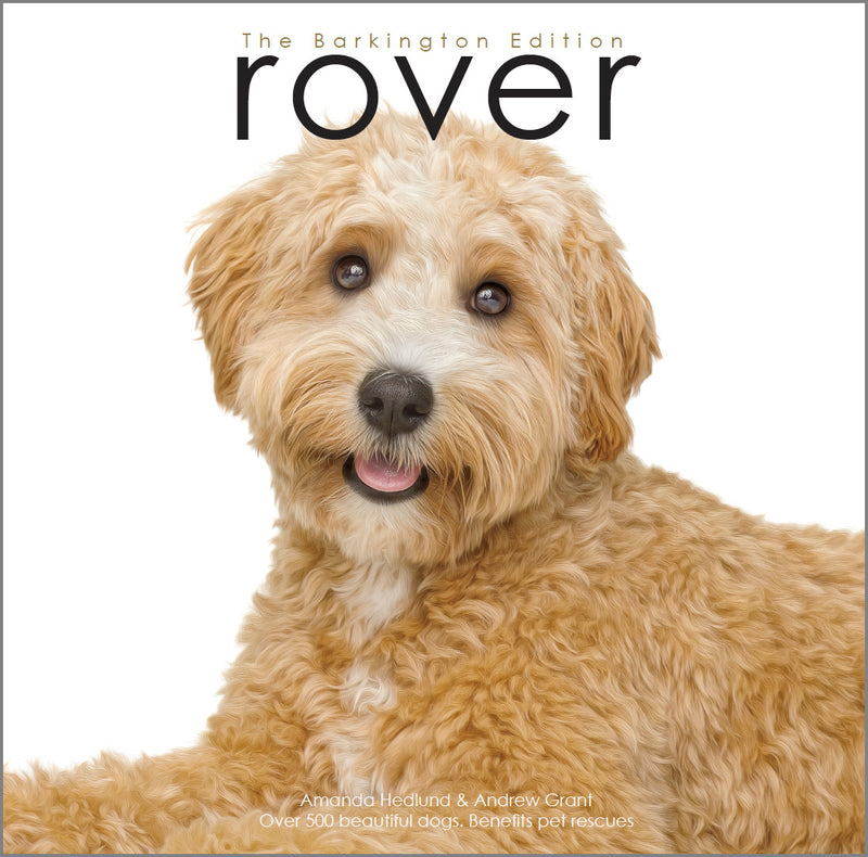 ROVER - BARKINGTON EDITION - PARKER