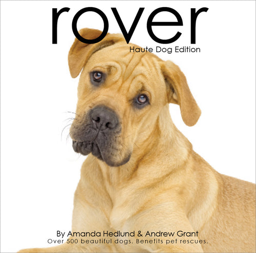 Rover Haute Dog Edition - Rocco