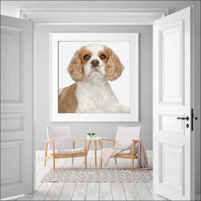 Prints of Your Dog(s)