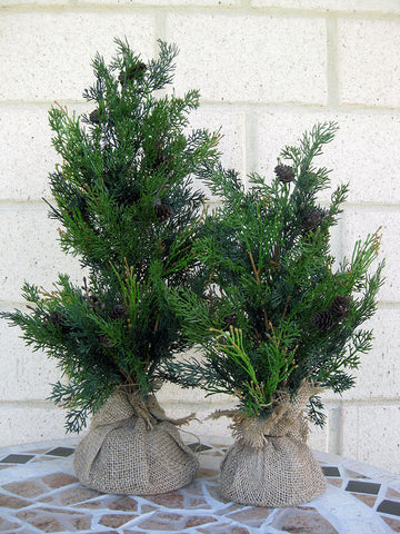 Tabletop Cypress Christmas Tree