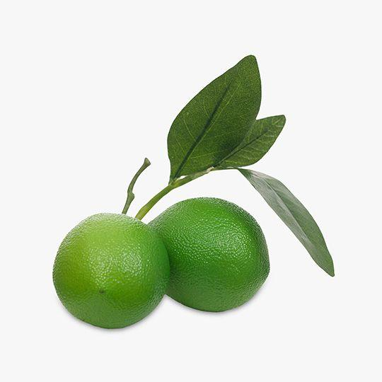 Lime Fruit Cluster with leaf - 15cm / Green - Decor