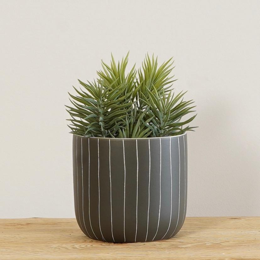 Succelent Scencio in Pot - 21CM / Grey Green - Artificials
