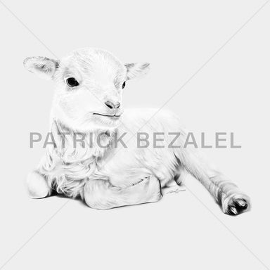 ROCKONLINE | New Creation Church | Joseph Prince | Star Vista | Rock Bookshop | Rock Bookstore | Art of Faith | Christian Creative | Christian Art | DIASEC™ Print | Hand-drawn Art | Fine Art | Patrick Bezalel | Lamb at Rest - Psalm 23 Hyperrealism Diasec Print | Free delivery for Singapore Orders above $50.