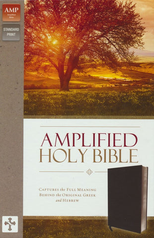 Amplified Thinline Bible Bonded Leather, Black