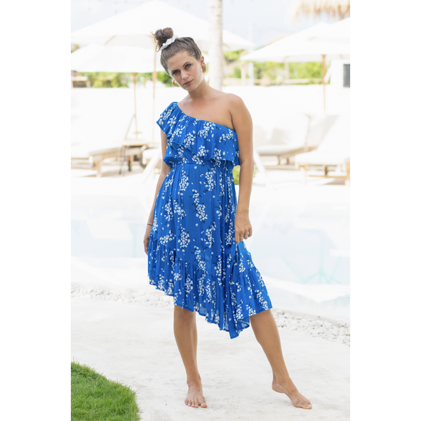 Pamela Dress - Blue Ulla Floral