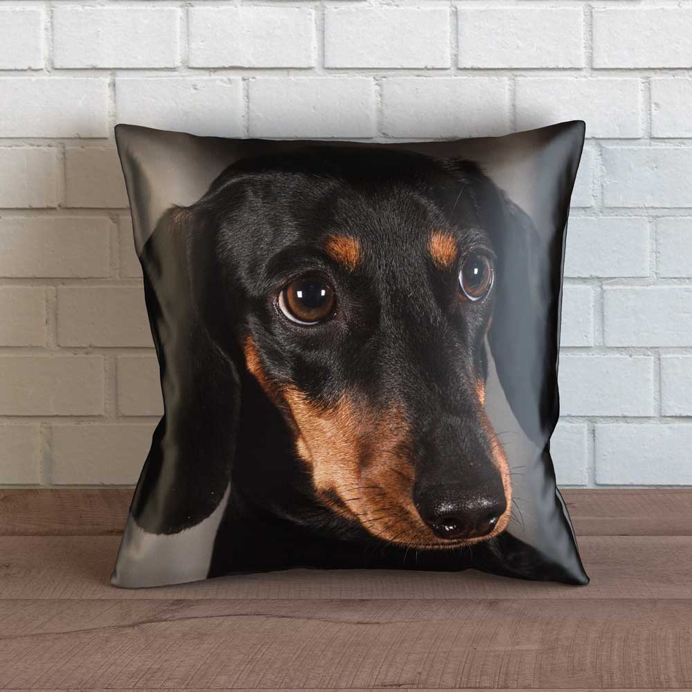 "Realistic Dachshund Throw Pillow Cover - 18"" x 18"""