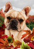 French Bulldog Tamara Burnett Fall Flag