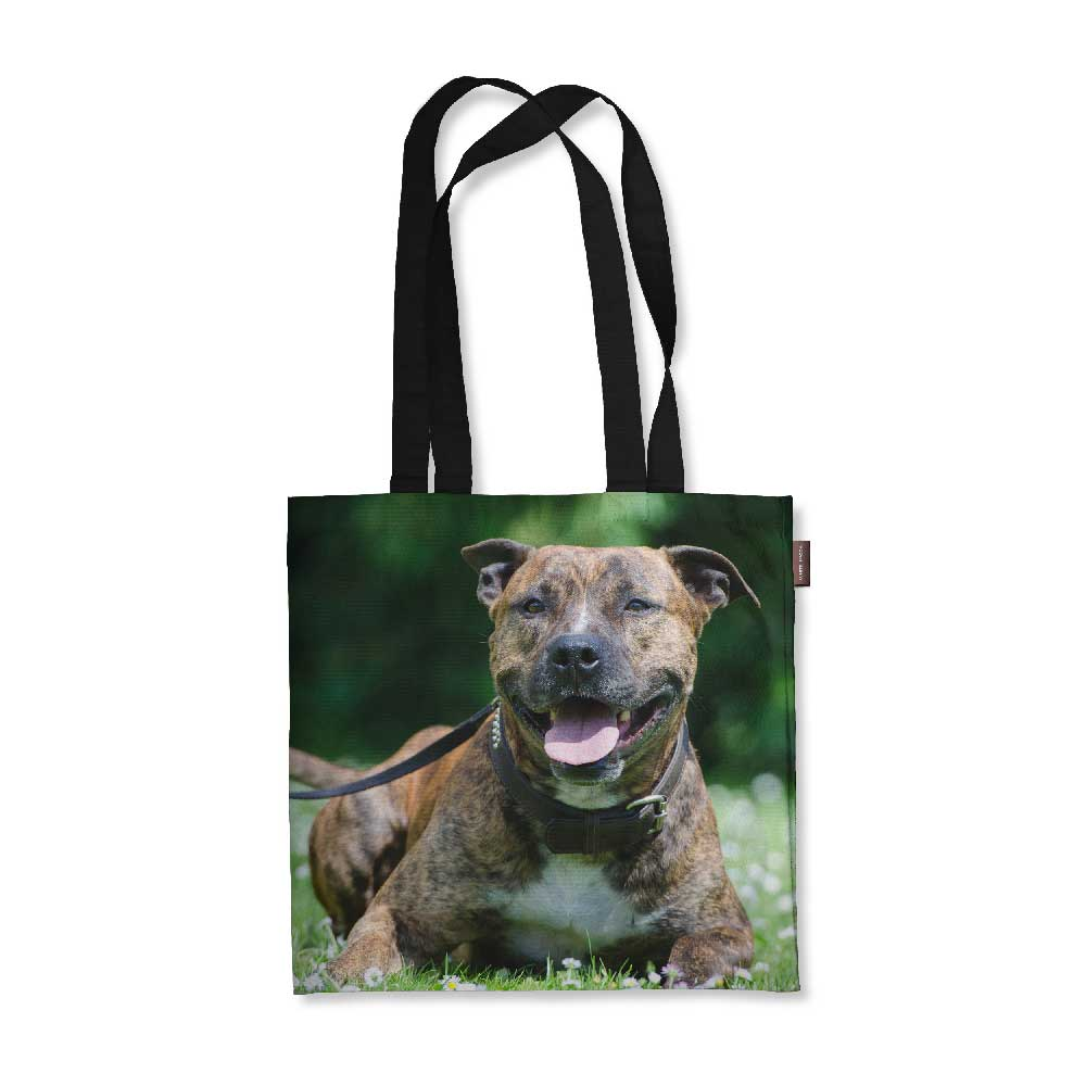 "Realistic Staffy Tote Bag - 18"" x 18"""