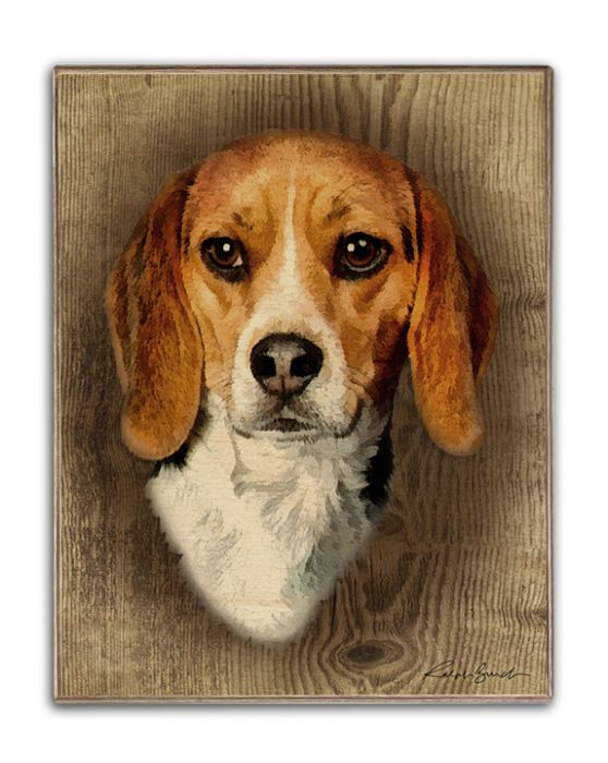 Beagle Birch Wood Portrait