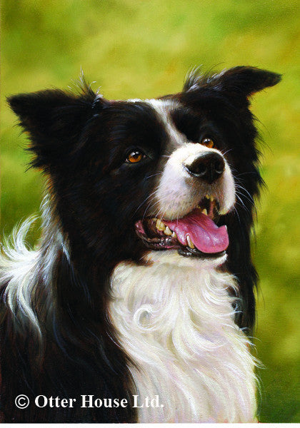 Border Collie John Silver Flag
