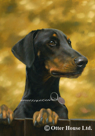 Doberman Pinscher Mostly Paws