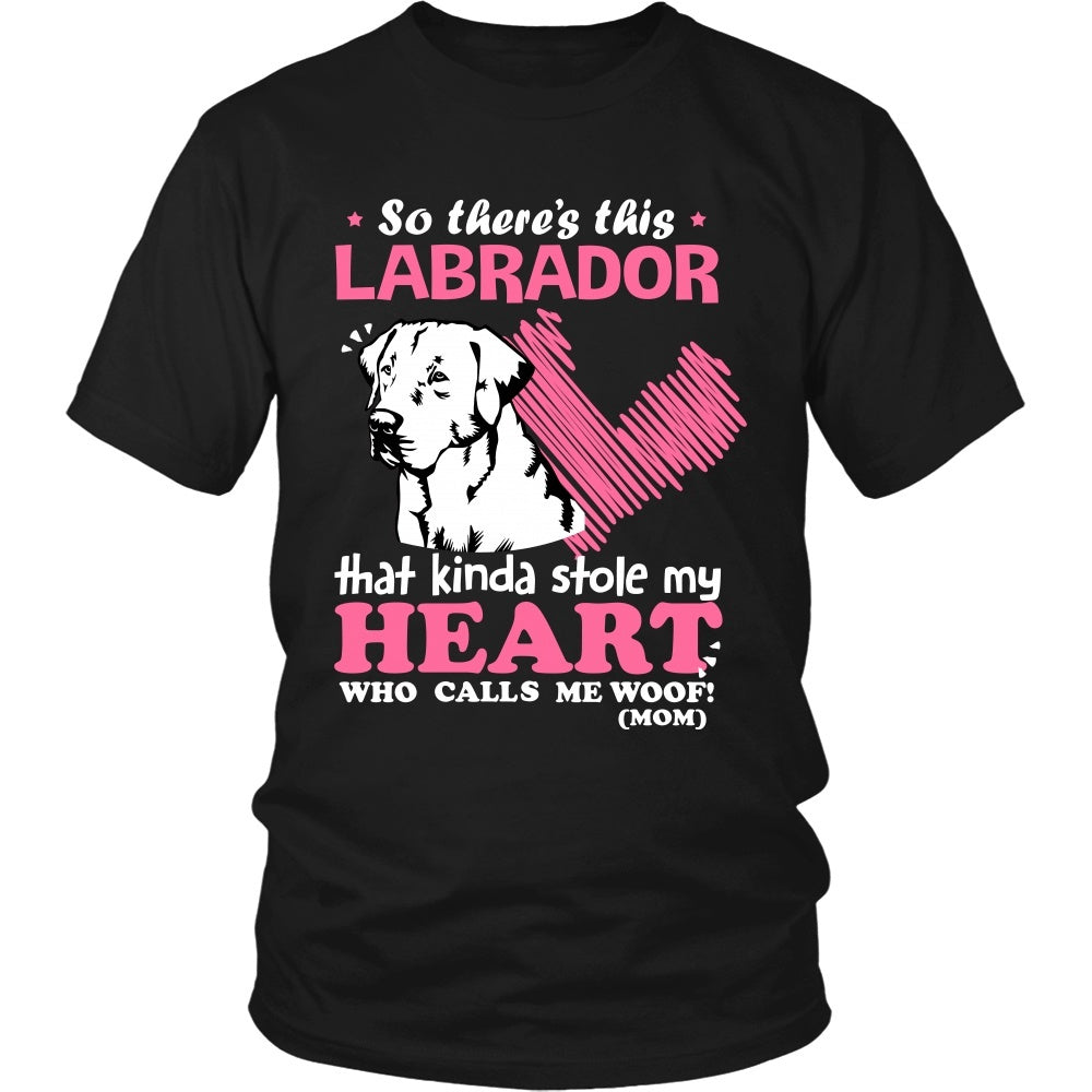 This Labrador Kinda Stole My Heart T-Shirt