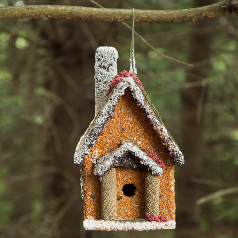 Holiday Edible Birdhouse
