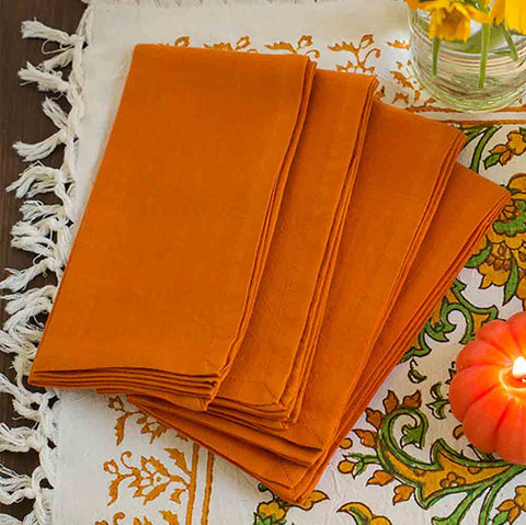 Pumpkin Spice Napkins - Set of 4- Isabella Catalog