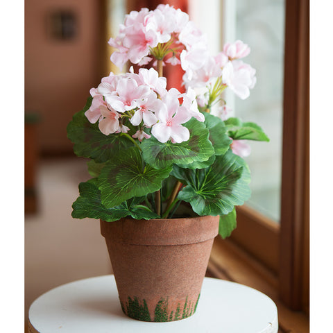 Perfectly Potted Geranium - Isabella Catalog