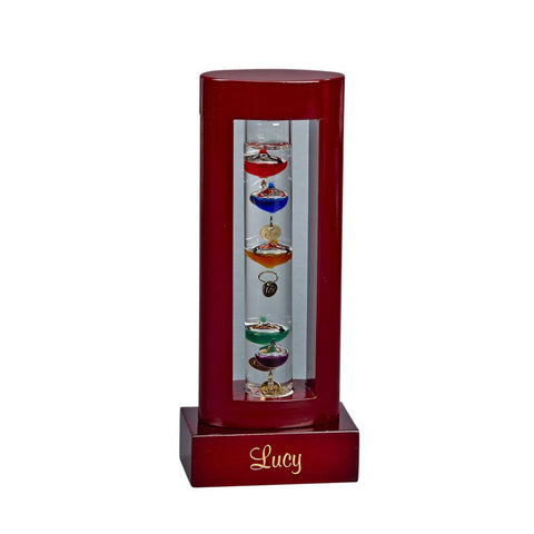 Galileo Thermometer Small