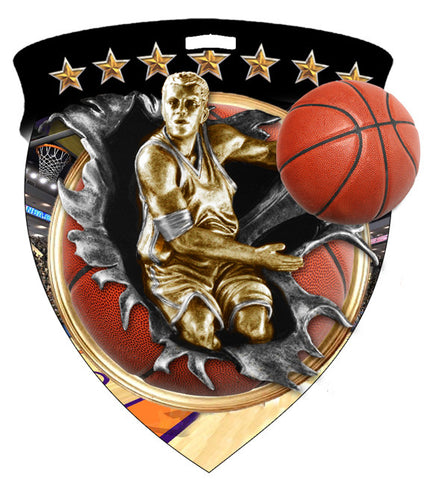 Color Shield Medallion Basketball Male